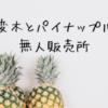 【西表島】レストラン唐変木ランチとパイナップルと無人販売所の手作りアイス